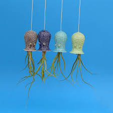 Air Plant Wall Holder Octopus Air Plant Hanging Planter The Green Head