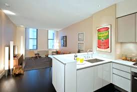 1 bedroom apartment in nyc 1 bedroom apartments nyc powncememe com