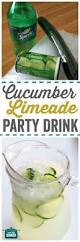 best 25 best summer cocktails ideas on pinterest best vodka