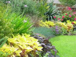 brainstorming how youud like to garden design landscaping dallas