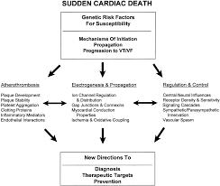 sudden cardiac death genes and arrhythmogenesis circulation
