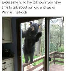 Funny Bear Memes - 19 of today s most funny memes memebase funny memes