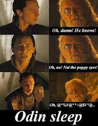 Puppy Eyes Meme - image result for odinsleep meme random stuff i like pinterest