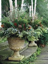 Plant Combination Ideas For Container Gardens - best 25 french garden ideas ideas on pinterest french country