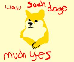 Such Doge Meme - doge meme