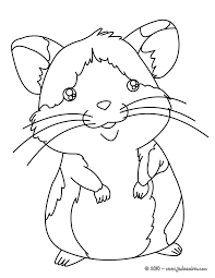 Coloriage De Hamster A Imprimer Coloriages De Hamsters Coloriages