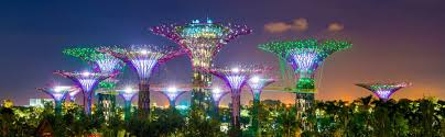 by the bay gardens by the bay