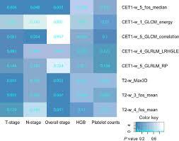 radiomics features of multiparametric mri as novel prognostic