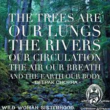 mothers earth earth quotes earth quotes nature quotes quotes earth