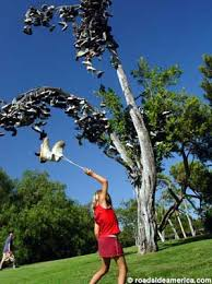 shoe tree disc golf course san diego california