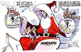 Monsanto Vanity Fair Monsanto Profiting Without Conscience U003e U003e Four Winds 10 Truth Winds