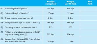 Sow Gestation Table Improving Key Performance Indicators Breeding Herd Kpis The Pig
