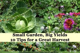 small garden big yields 10 tips for a great harvest