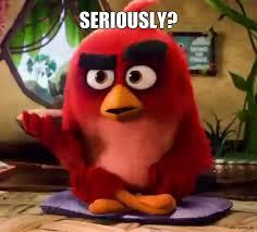 Angry Bird Meme - funny angry birds memes best bird 2018