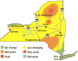 weather map ny map of fall foliage across york week of october 4 syracuse com