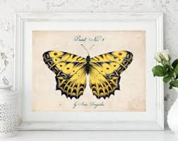 printable butterfly etsy