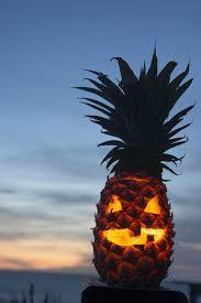 meet the pumpkin u0027s punk brother the pineapple jack o u0027 lantern