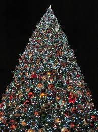 9 reasons christmas is the best holiday