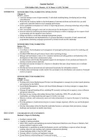 sle resume for business analysts duties of executor of trust senior director marketing resume sles velvet jobs