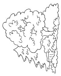 Coloriage Arbres  Les beaux dessins de Nature à imprimer et