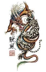 white tiger yin yang yin yangs yin yang