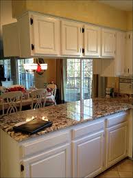 100 kitchens with white cabinets and black appliances 100