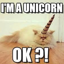 Unicorn Meme - i m a unicorn cat unicorn meme on memegen