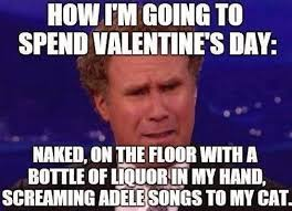 Single On Valentines Day Meme - me on valentines day meme startupcorner co