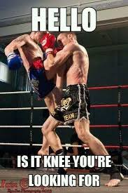 Muay Thai Memes - self defence mma