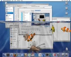 wallpaper ikan bergerak untuk pc download desktop bergerak 3d full serial number download
