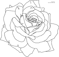 red color rose colouring pages with coloring pages draw a rose for