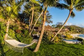 ls that look like trees kokomo private island fiji hipexplore inc