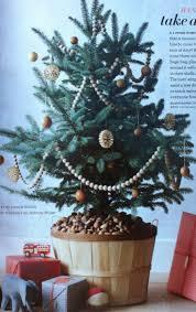 live christmas tree stands christmas lights decoration