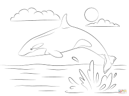 killer whale coloring pages cute killer whale is jumping out of