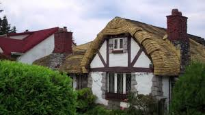 interesting houses curved roof house with quaint old style look