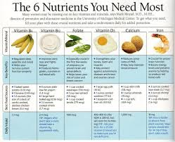 My Plate Worksheets 39 Best Preschool Nutrition Project Images On Pinterest