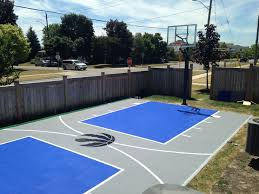 small side yard basketball court w boxwood and net barriers image