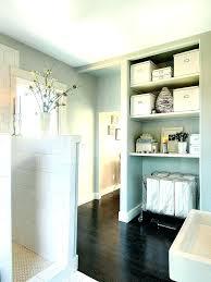 Bathroom Laundry Storage Bathroom Laundry Bin Aciarreview Info