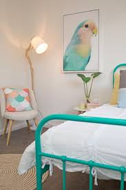 kids bedroom aqua metal single bed frame parrot artwork round