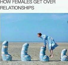 Memes For Relationships - how females get over relationships adult meme