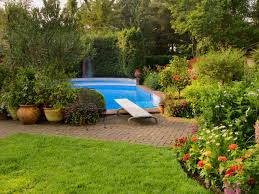best 25 california native landscape what to consider before landscaping by a swimming pool