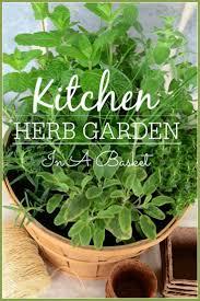 710 best herbs images on pinterest herb gardening indoor