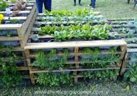 Pallets Garden Ideas Pallet Ideas For The Garden 19 Appealing Pallet Gardening Ideas