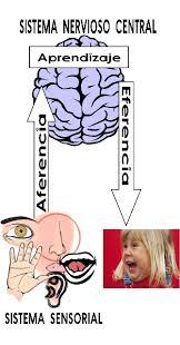 significado de imagenes sensoriales wikipedia revista electrónica de podium