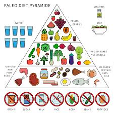 image result for paleo paleo diet pinterest diet meal plans