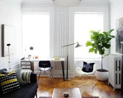 House And Home Furniture Decorate Your House With Tall House Plants Wearefound Home Design