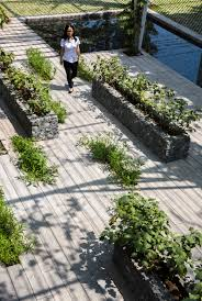 gallery of vegetable trellis cong sinh architects 2