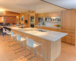 Bamboo Kitchen Cabinets Bamboo Kitchen Flooring Houzz