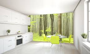 kitchen wall mural ideas modern dining room photos light sky wall mural kitchen murals best