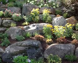 rock garden designs for front yards beautiful modern front yard